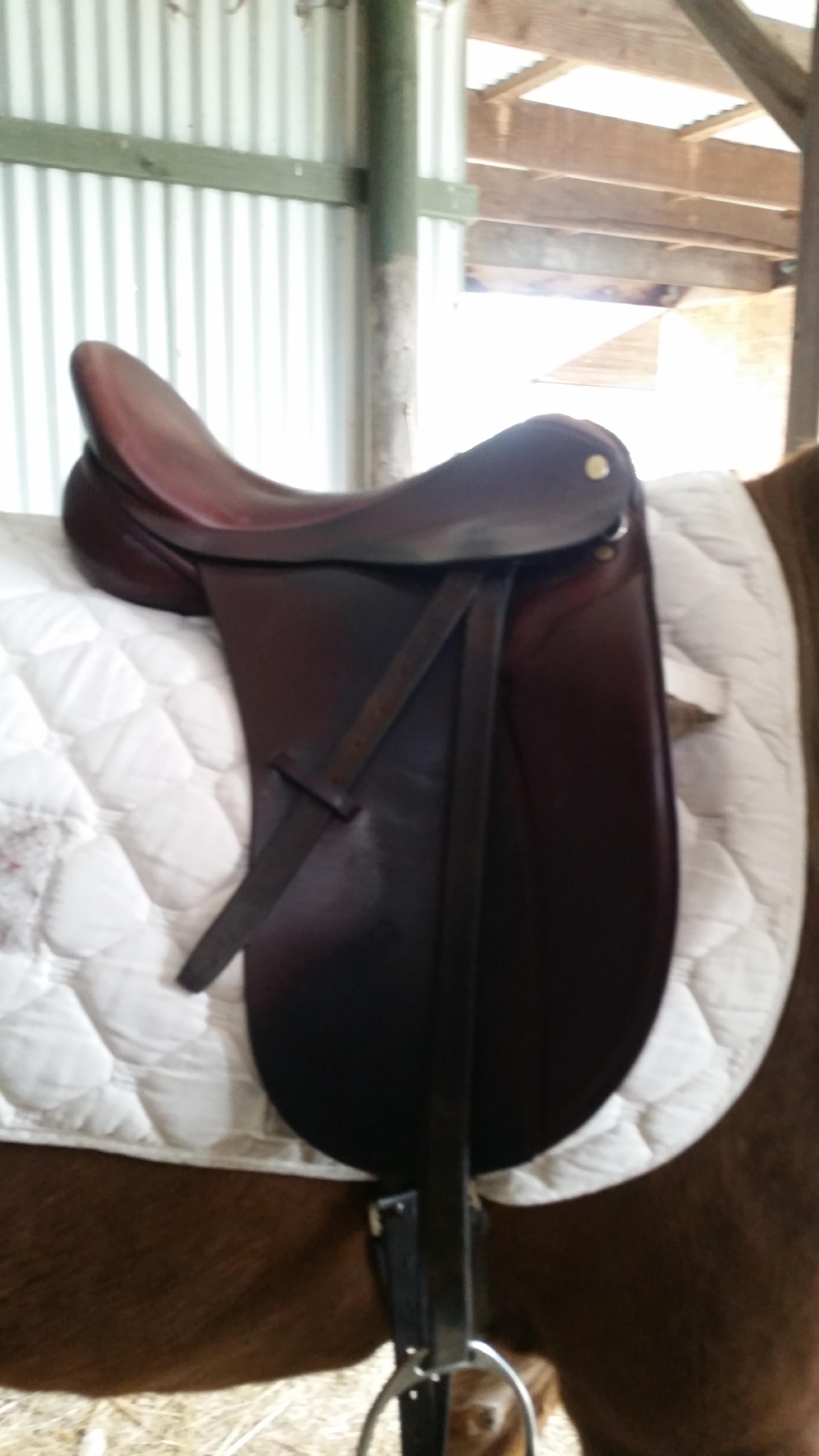 Ambassador Saddle