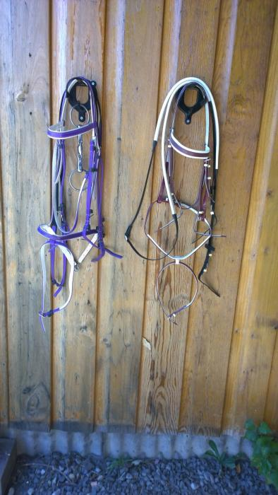 New PVC Eventing or Racing Bridles