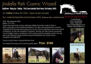 Jindalla Park Cosmic Wizard