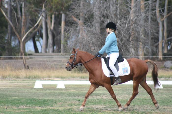 Great 1st Pony