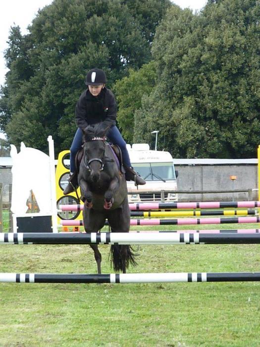 Brilliant Childs Pony