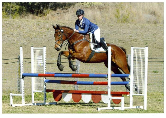Ultimate interschools Showjumper