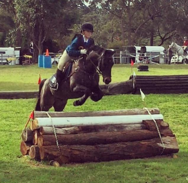 Top All-Rounder Pony