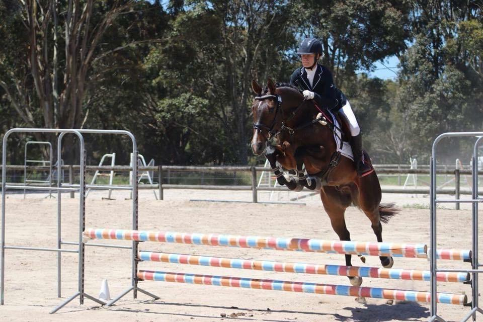 Perfect Temperment, a year of Intro Eventing