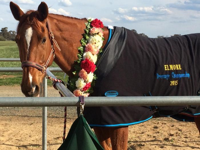 Once in a Lifetime Opportunity - Schoolmaster