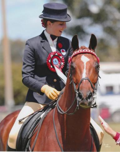 Smartest on Parade Rider 17-21 years - 2012 NSW SHC Horse of the Year (Lorelle Mercer)