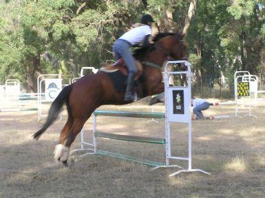clearing A grade jumps with scope to spare at May 2013 clinic
