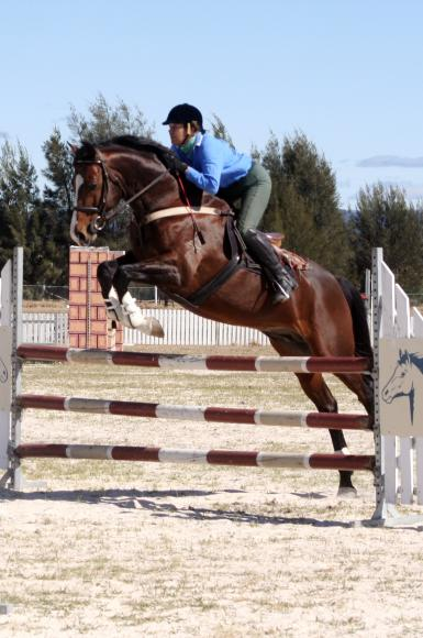 Showjumping with Colleen Brook