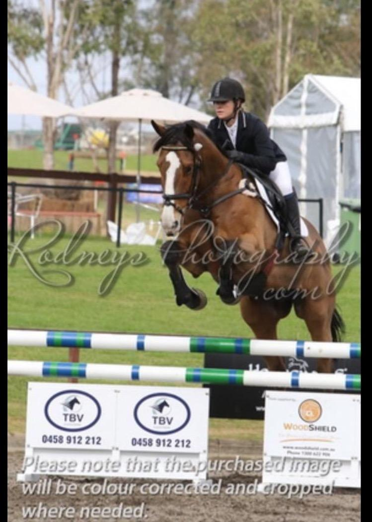 LOVELY EVENTER AND SHOWJUMPER