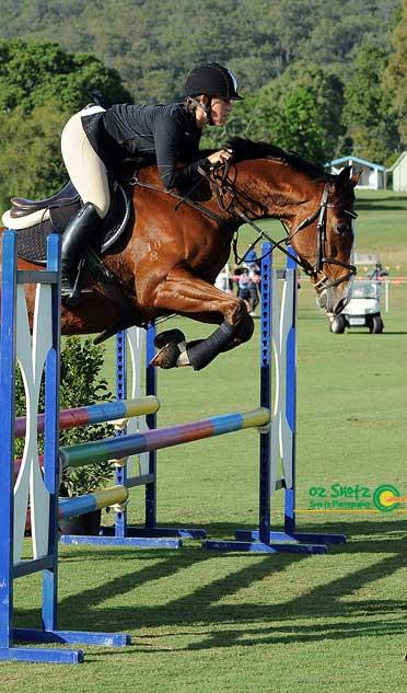 jump event dressage 4 year old competition gelding