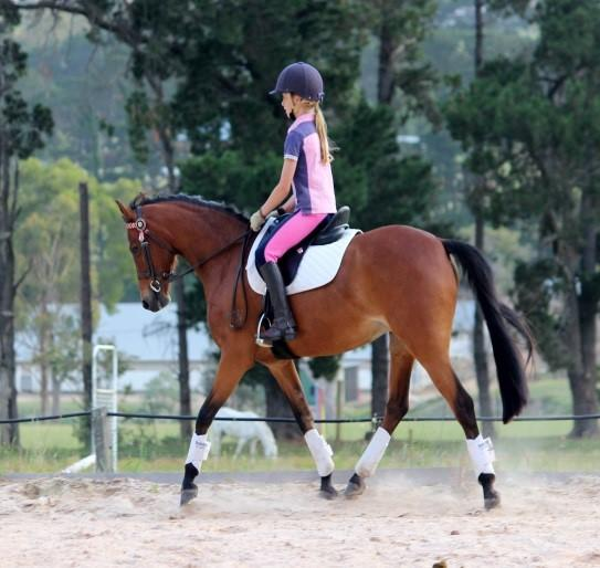 Perfect childs Allrounder -Melody Park Fairy Wings