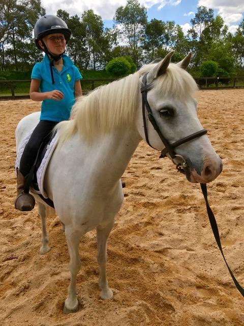 13hh child's pony