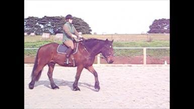 jordi riding