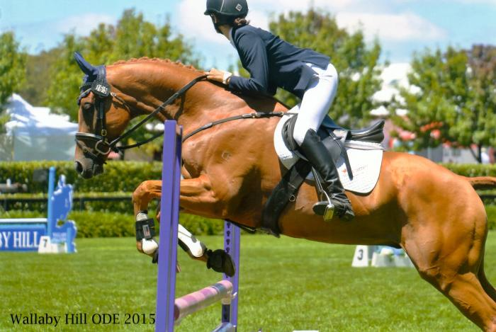 Flash Young Eventer
