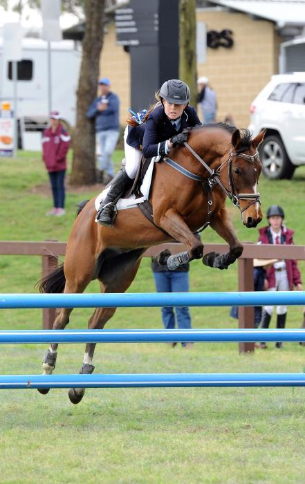 Sold - Talented Show Jumper - Galloway