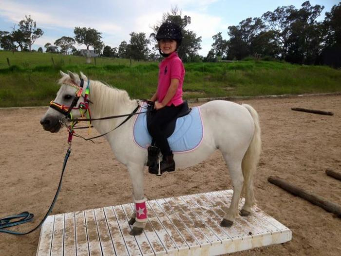 Mothers Dream confidence builder beginners pony
