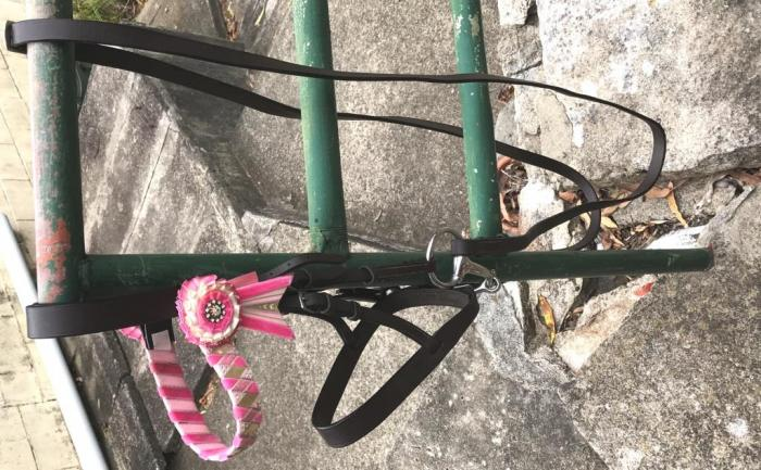 PONY SHOW BRIDLES - COMPLETE WITH BROWBAND AND BIT