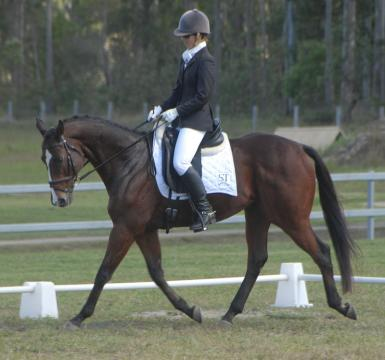first dressage outing