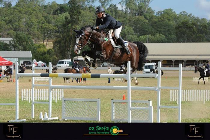 Finch Farm Choices - ACE Group Stallion Service