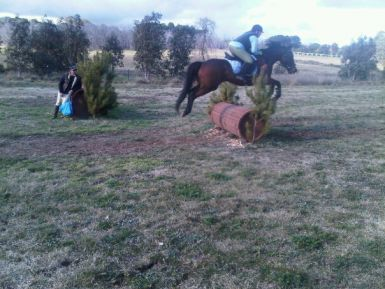 X Country roll top jump