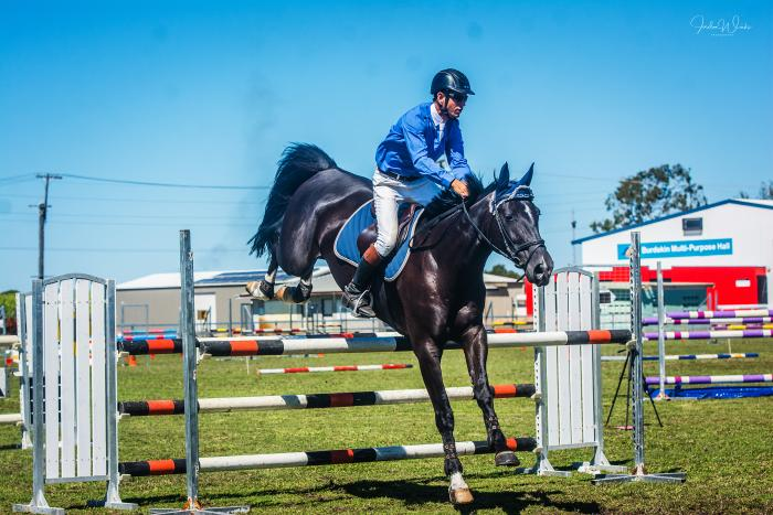 showjumping mare by Kaptain