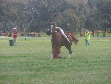State Mounted Games- Albury