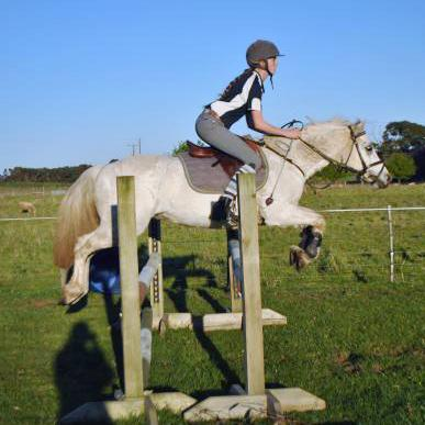 Competitive Pony Club / Allrounder