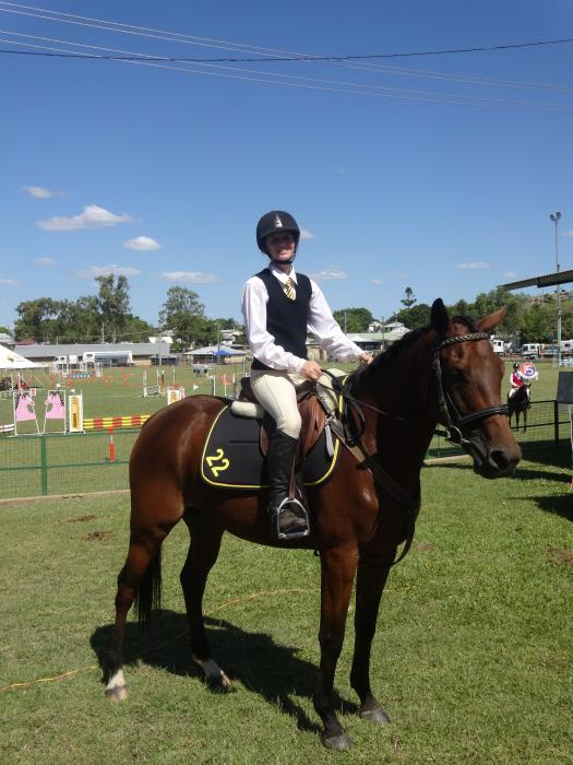Great All Round Stock Horse x TB - Going to waste