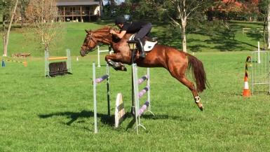 NZ rider