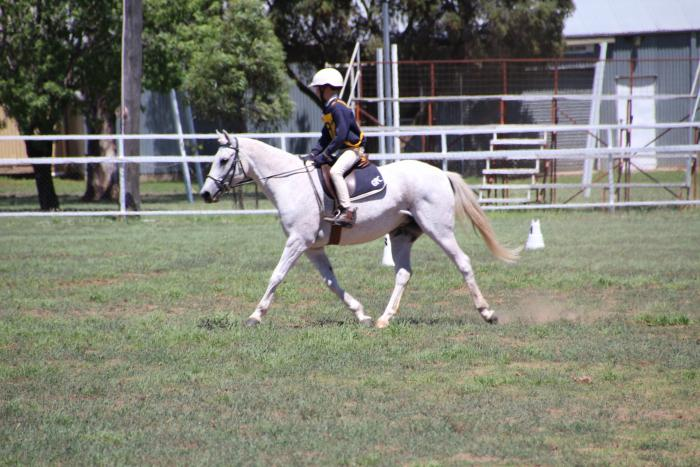 Talented Pony Clubber