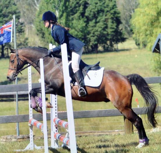 fun versatile second pony