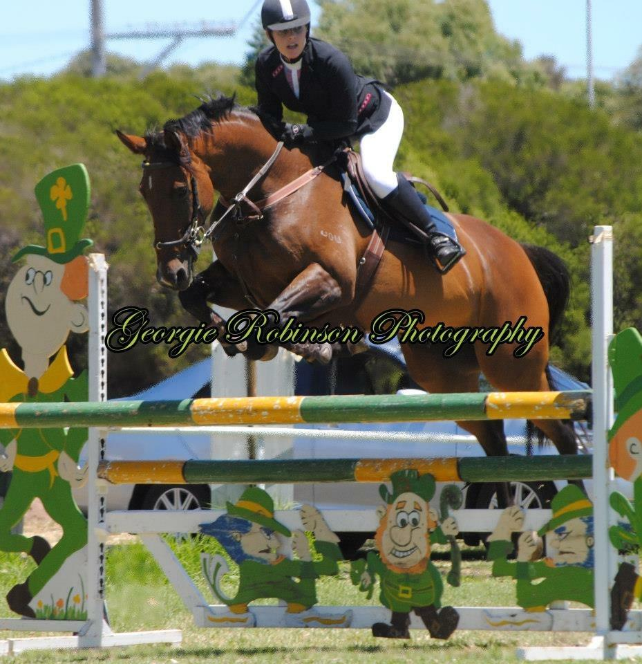 Talented Mare going to waste