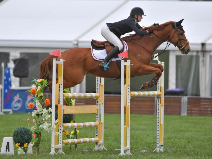 Ultimate Junior / Young Rider Show jumper