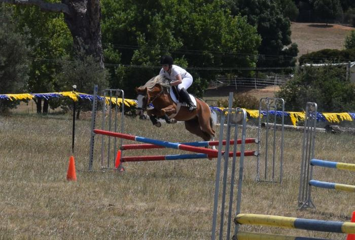 Super Jumping Pony!