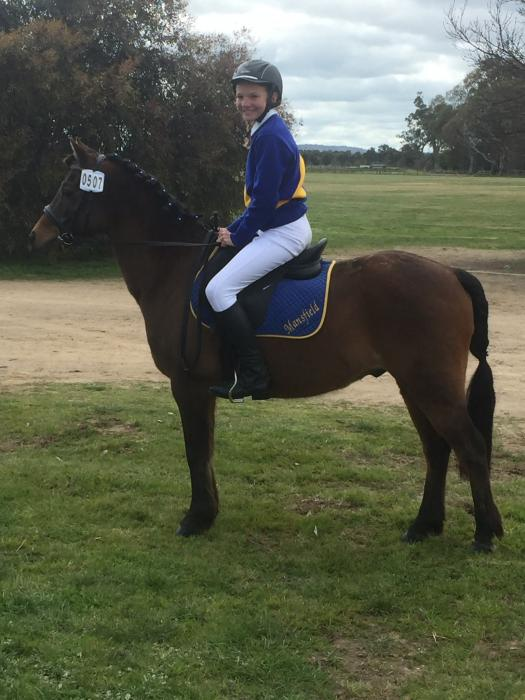 Beginners or second pony