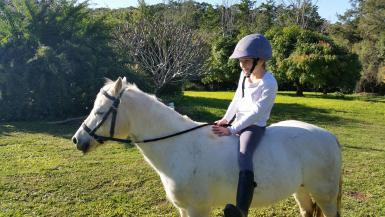 Fifi with an absolute beginner, bareback and bitless