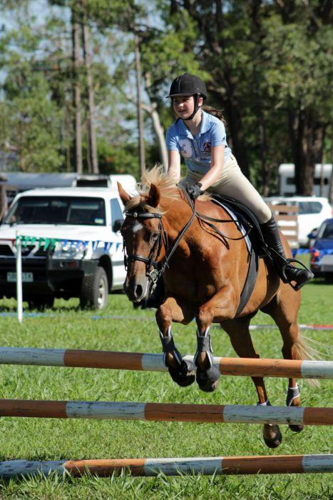 Showjumping Pony