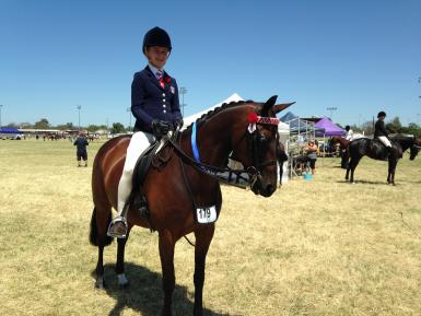 NSW Country Hack Championships