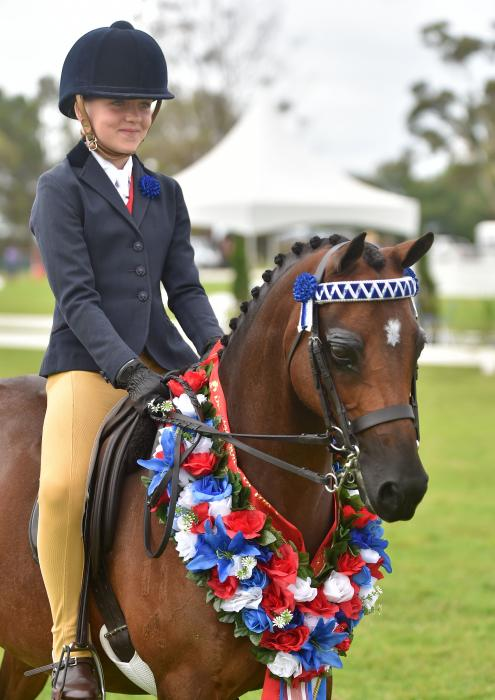 Perfect competitive childs pony allrounder