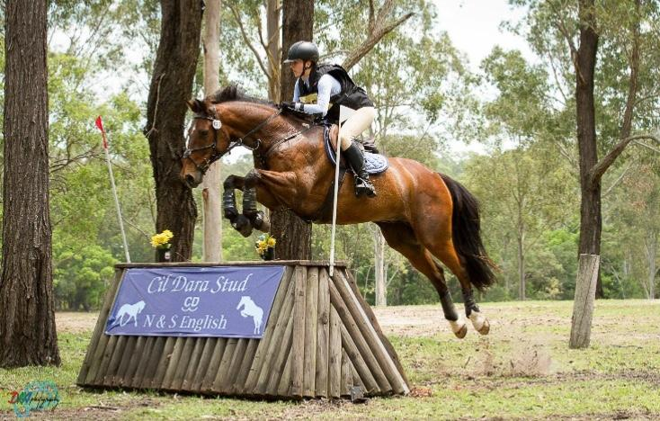 Experienced and talented one star eventer