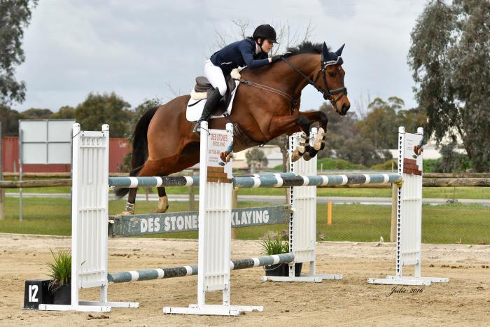 Super Careful Juniors Horse