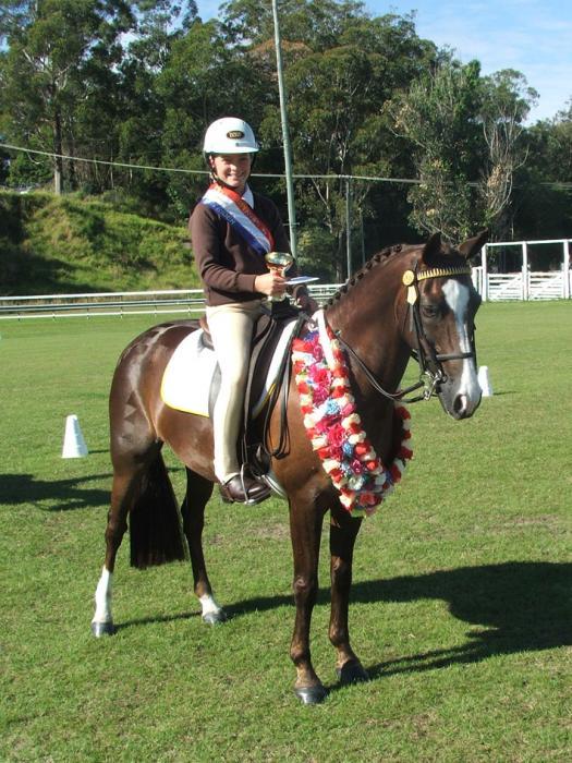 Allrounder Pony