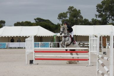 Premier Floats Showjumping 2011