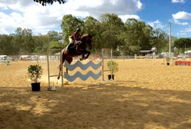 110cm Showjumping Day