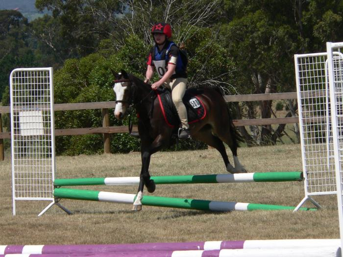 Great Second Pony - Boots
