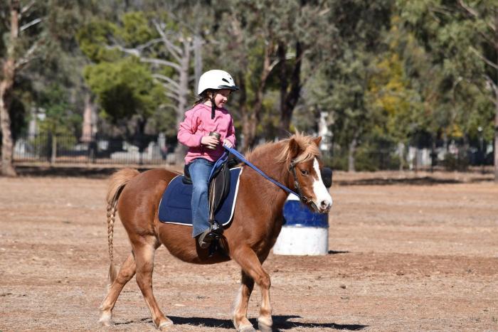 The CUTEST pony around!