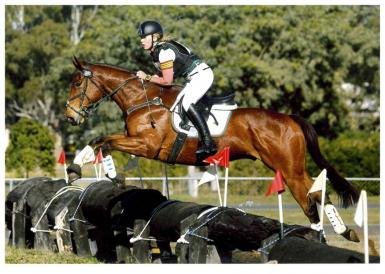 Interschool State Eventing