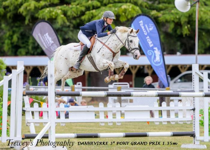 Top 1.35m NZ Showjumping Pony
