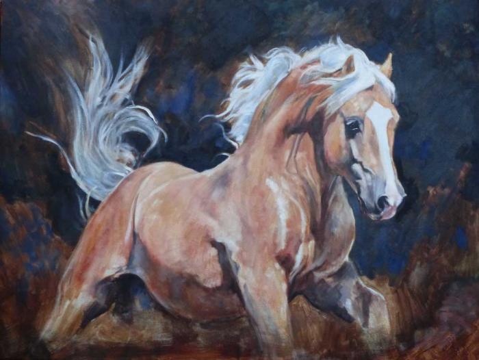 Champion palomino stallion by frozen AI (in Aus)