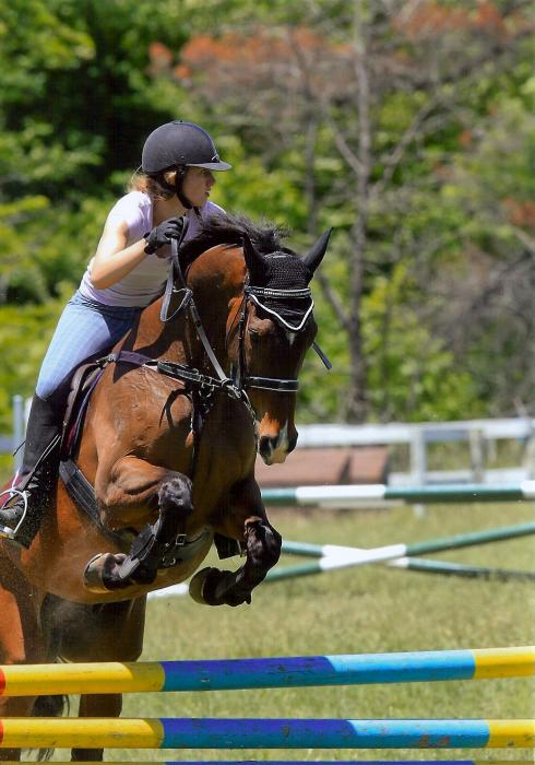 Bold, experienced and reliable showjumper